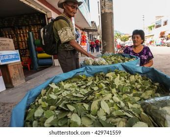 TINGO MARIA, PERU - JUNE 22: The sale of coca leaves in streets of Tingo Maria in Peru, 2011
