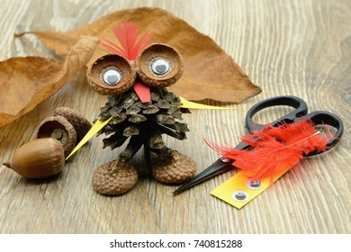 tinker an owl with pine cone, acorn and paper with feathers. plastic eyes, paper and scissor aside.