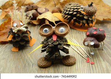 tinker small owl, squirrel figure,snail and ladybug made of pine cone and acorn parts. glue and tooth sticks aside.