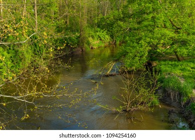 Tinkers Creek flowing through a Twinsburg Ohio parkland in spring