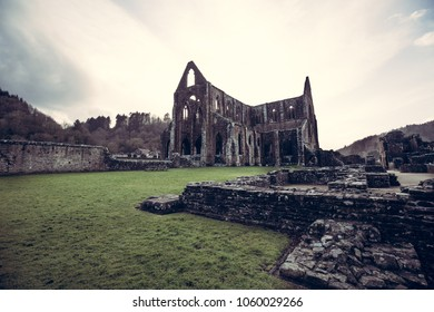 Tintern Abbey. A world famous monastic ruins in Wales.