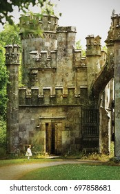 Tiny girl in a front of old castle in irish forest (digital artwork)