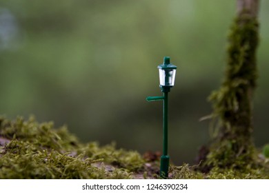 Tiny lamp post on a mossy branch