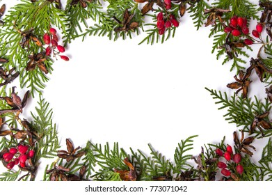 Tiny pine cones with mistletoe and fir branches with copy space