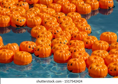 Tiny pumpkins float in a child's pool, all marked on the bottom with a special number. Pick the right number, win a great prize!