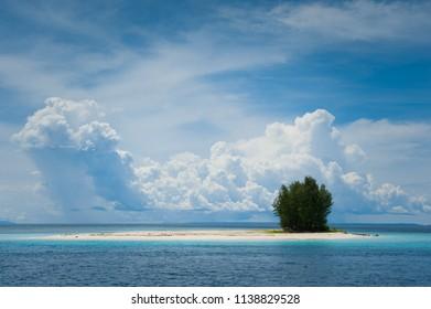 Tiny tropical island with a small patch of trees. Taken in Cenderawasih Bay, Papua province of Indonesia.