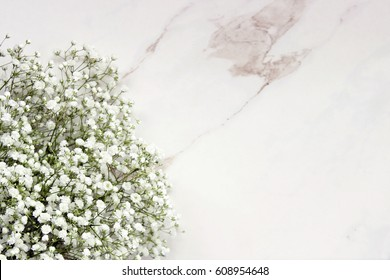Tiny white baby's breath flowers frame open white marble space for copy.