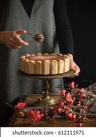 Tiramisu cake party style