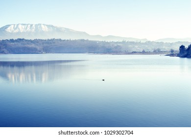 Tirana artificial lake in winter with Dajti mountains with snow and reflection in calm water.