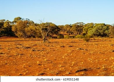 Tirari Desert in outback South Australia surrounds the mining town of Roxby Downs