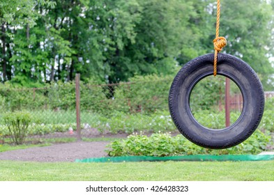 tire, swing on a background of green trees
