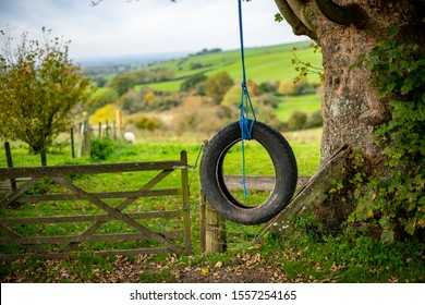 Tire swing: Tire and rope hanging from an old oak tree. Brill Hill, Buckinghamshire countryside. Heritage site and popular tourist attraction location.