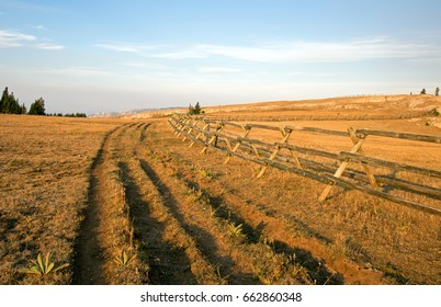 Tire track ruts next to Split Rail Fence at sunrise above Lost Water Canyon in the Pryor Mountains Wild Horse range on the Montana Wyoming state line USA