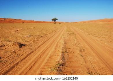 Tire tracks across the desert