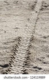 Tire tracks on dirt