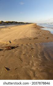Tire tracks Padre Island National Seashore, Corpus Christi, Cameron, Kenedy, Kleberg, Nueces, Willacy Counties, Texas, USA. Stolen land of Coahuiltecan, Ndé Kónitsąąíí Gokíyaa (Lipan Apache)