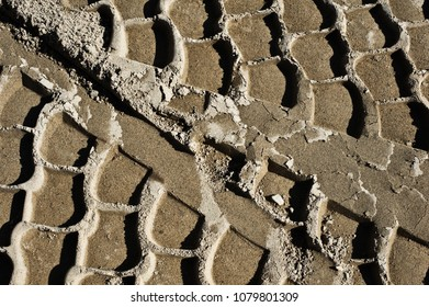 Tire tracks in the sand.