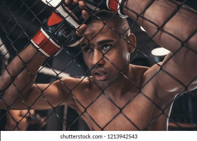 Tired Afro American fighter in gloves is leaning on the net of the cage
