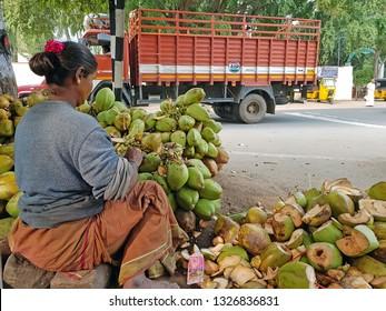 Tiruvanamalai, India -December 10, 2019:  Preparing coconuts for sale in Tiruvanamalai in India