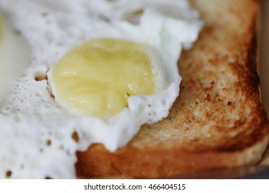 toast and fried  organic eggs