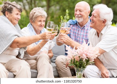 A toast made by happy senior women and men to celebrate the beautiful summer afternoon during their leisure time together. Smiling elderly couples with wine glasses.