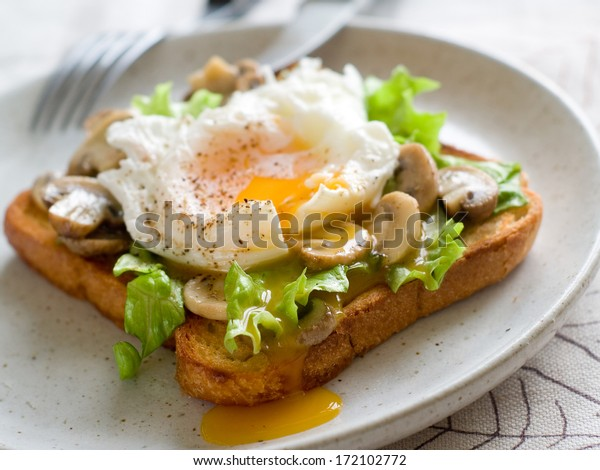 Toast sandwich with mushroom, poached egg and lettuce, selective focus