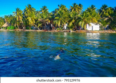 TOBACCO CAYE BELIZE - JAN 2017: A single snorkeller approaches Tobacco Caye off the coast of Belize