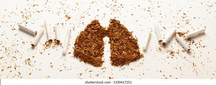 Tobacco for smoking in form of human lungs, cigarettes. Addiction to smoking, harm of tobacco smoke. Bad habit, smoking kills.