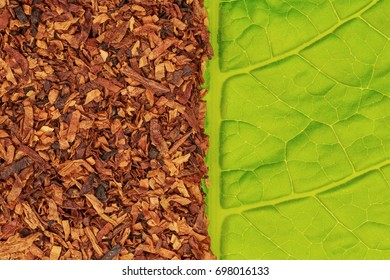 Tobacco texture. High quality dry cut tobacco big leaf, close up. Tobacco dry  and green tobacco leaf  background