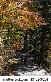 TOCHIGI, JAPAN - NOVEMBER 15, 2018: Tourists walking under autumn trees at Nikko, Tochigi Prefecture, Japan