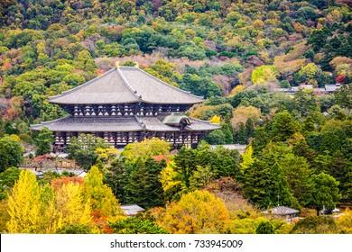 Todaiji Temple in the fall in Nara, Japan.