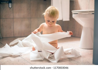 Toddler baby boy, child ripping up with toilet paper in bathroom