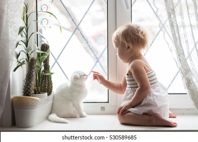 Toddler blonde girl playing with white cat on the window real interior, lifestyle, soft focus, the concept of childhood and animals