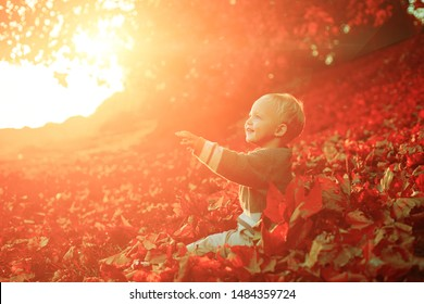 Toddler boy blue eyes enjoy autumn. Small baby toddler on sunny autumn day. Warmth and coziness. Happy childhood. Sweet childhood memories. Child autumn leaves background.