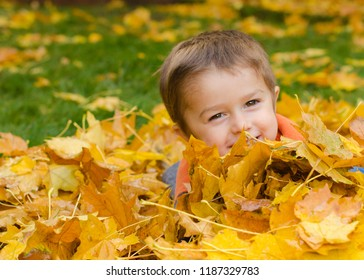 Toddler Boy in Fall Leaves