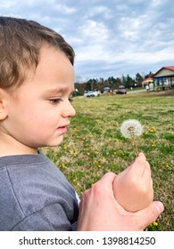 Toddler boy holding dandelion flower, looking at it. Blue sky and green grass.