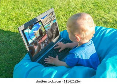 Toddler boy playing in the laptop in the computer games on the grass in the garden on a summer day, concept of development