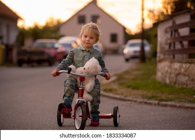 Toddler child, blond boy, riding tricycle in a village small road on sunset with teddy bear