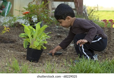 Toddler Digging Earth to Help Plant a Shrub
