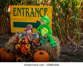 Toddler dressed up in cute costumes at the corn maze.