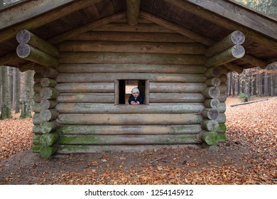 Toddler enjoying the golden autumn view from a blockhouse in the Bavarian Forrest, Germany