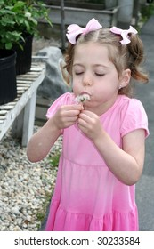 Toddler girl blowing fuzz off of dandelion