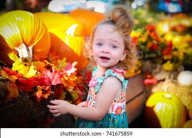 Toddler girl at pumpkin patch