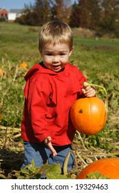 Toddler holding a pumpkin