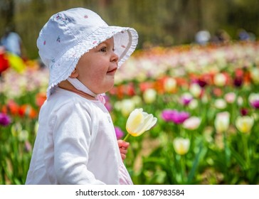 Toddler is holding a yellow tulip flower