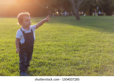 Toddler pointing up with his hand while posing in green meadow during sunset with warm colors