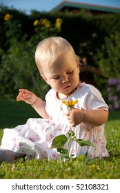 toddler sitting in the meadow and plays