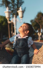 Toddler sitting on tree and looking up while posing during sunset with vintage colors