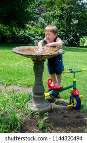 Toddler splashing water in a bird bath, and he is being very creative by standing on his small tricycle to reach