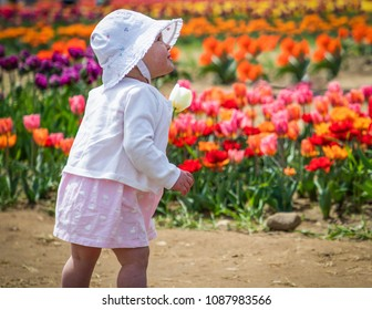 A toddler is standing and holding a yellow tulip